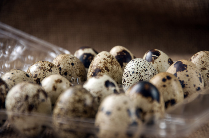 Quail Eggs On Burlap Background Quail eggs - useful and nutritious food ** Note: Soft Focus at 100%, best at smaller sizes
